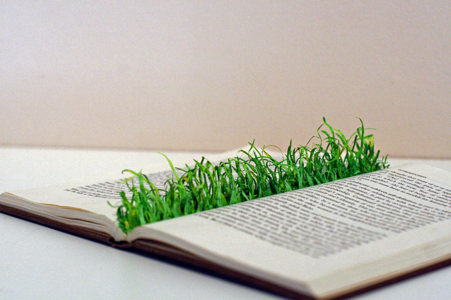 Grass Book-The End of a Tradition