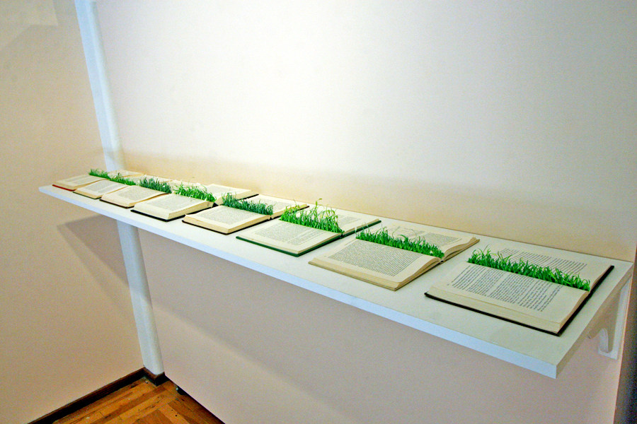 Install view of grass books